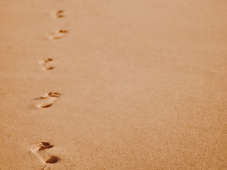 Carbon Footprints: Definition and Implications