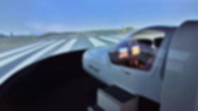 flight simulator  DA42_FNPTII.jpg