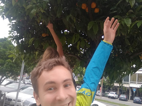 TWCH2019: Коїмбра - місто дощу та мандаринів (день 2)