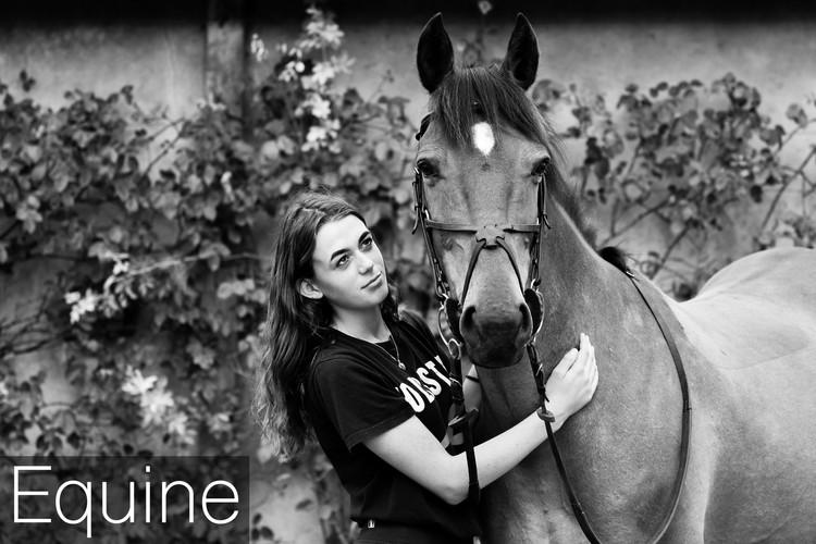 Equine Cover 3.jpg