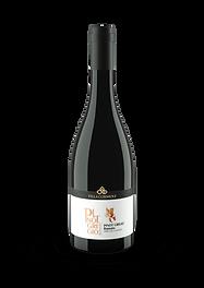 Pinot-Grigio-Ramato.png