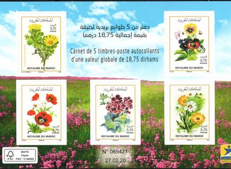 Carnets du Maroc ( juin 2020 )