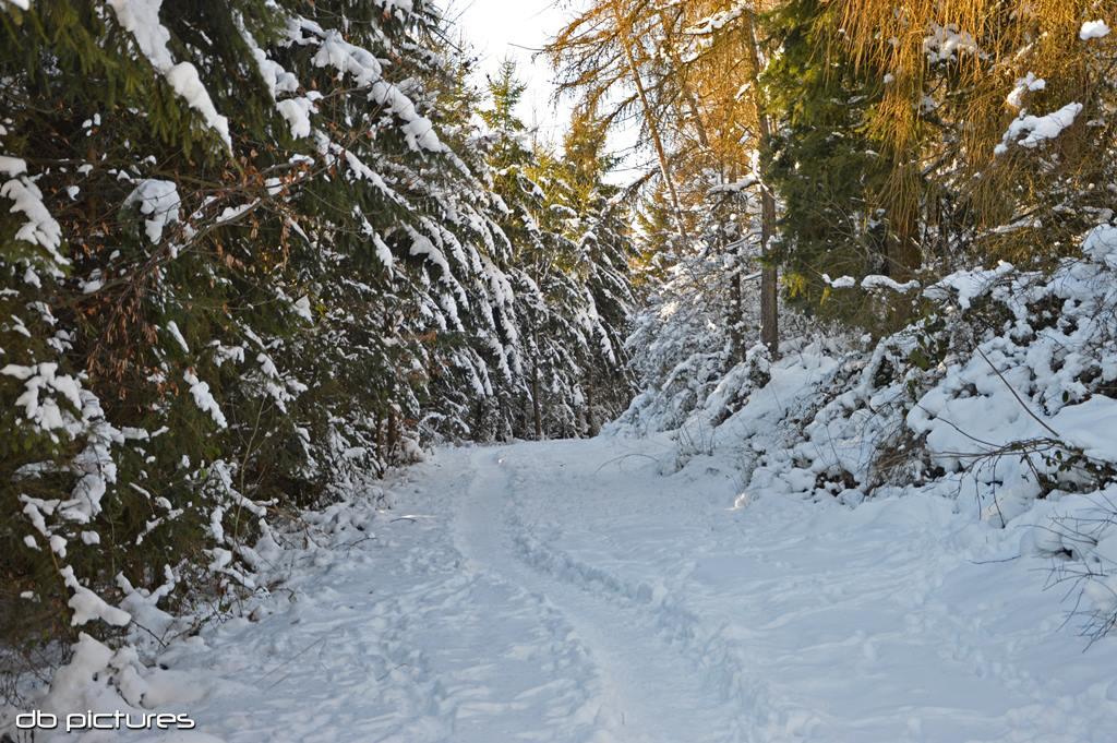 Sneeuw in Gönnersdorf