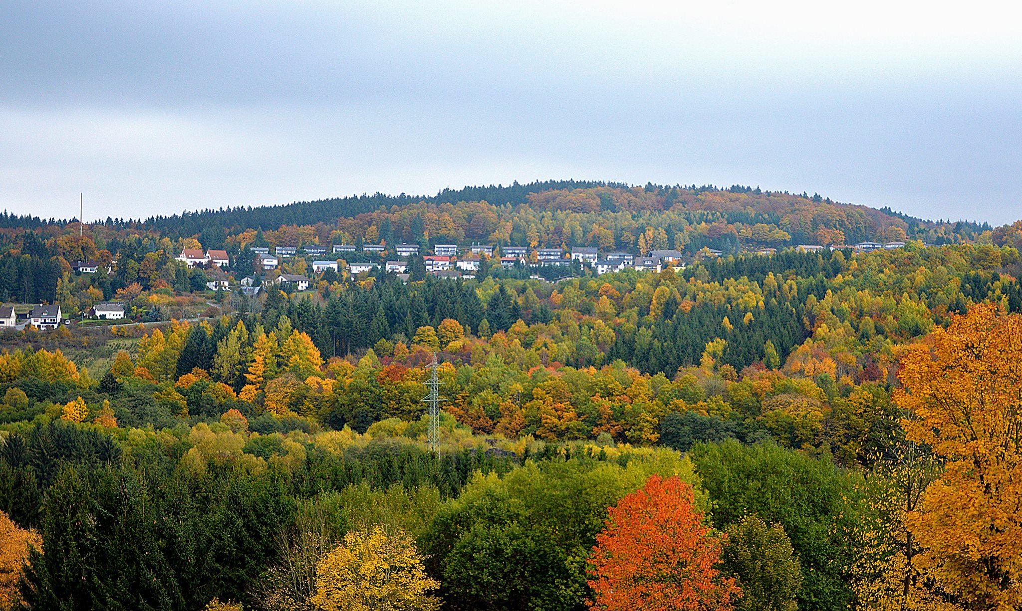 Natuur in de Eifel