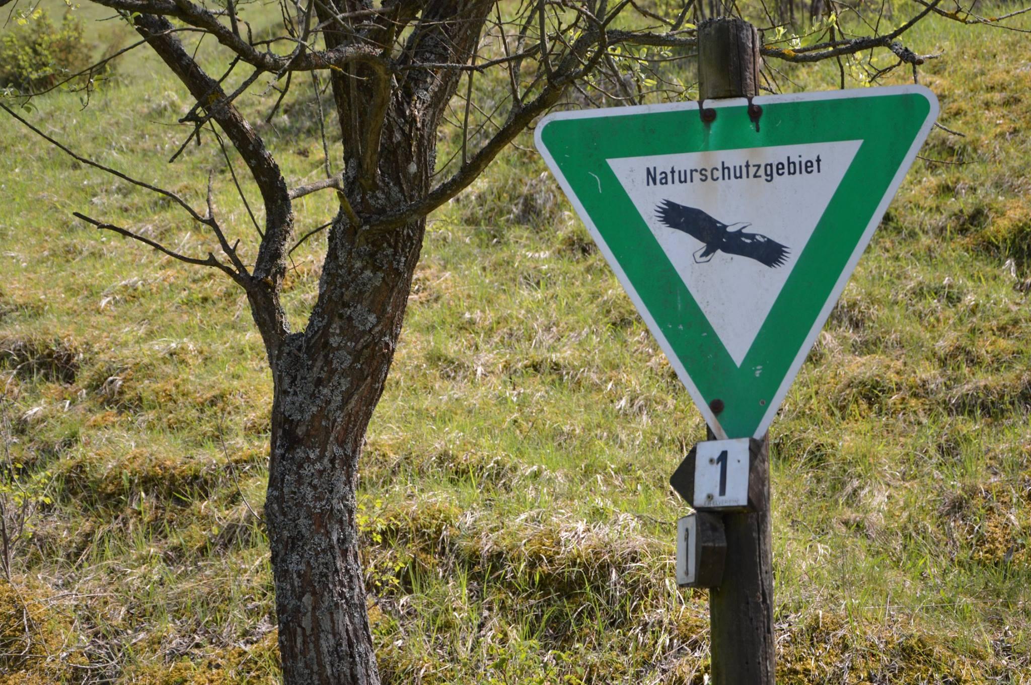 Natuurgebied Eifel