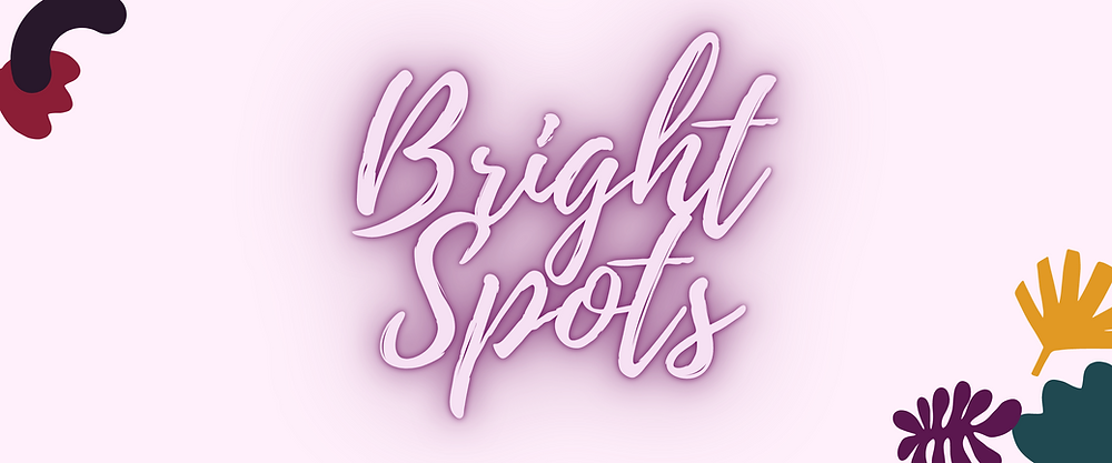 "A banner reading ""Bright Spots"" and links to Spitfire's donate page"