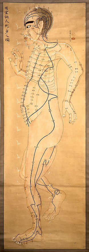 Japanese_acupuncture_chart._Wellcome_L00