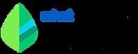 Mint-Logo-1.png