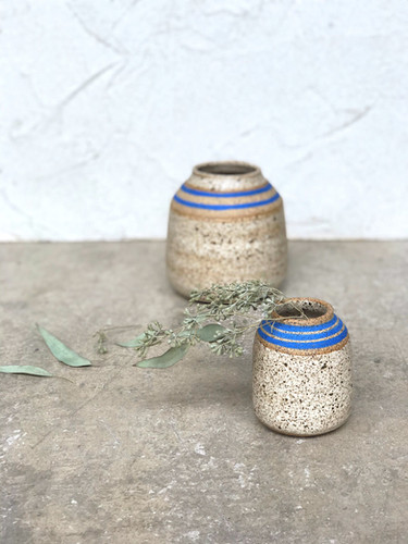 Speckled and Striped Budvases