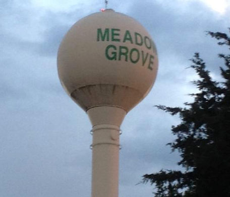 meadow grove