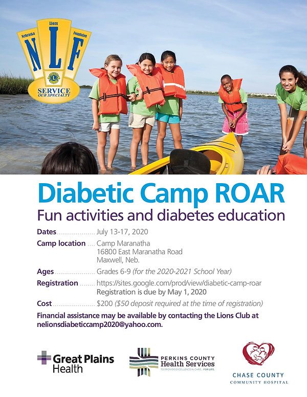 Diabetic Camp ROAR Flyer 6-page-001.jpg