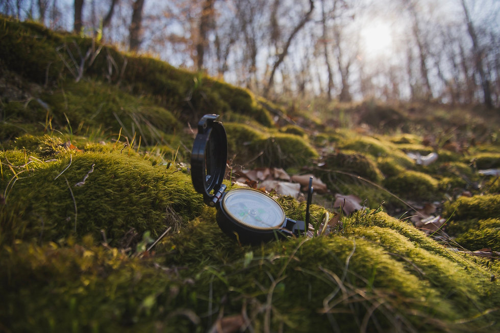 close-up-of-compass-on-the-grass.jpg