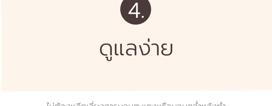 4. ดูแลง่าย