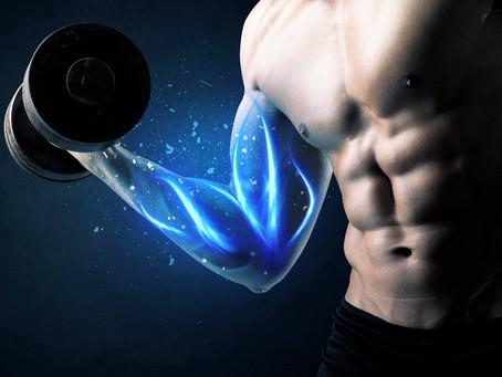 Your Body's Building Blocks