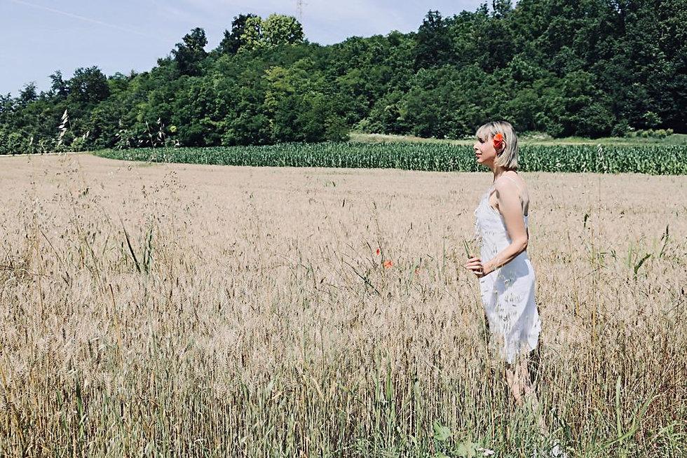 campo grano.jpg