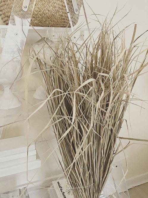Giant Dried Grass