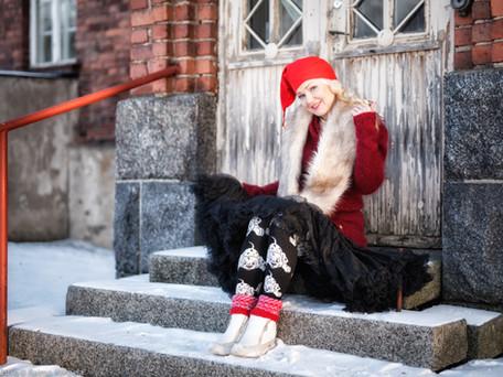Joulu- ja talviaiheinen mallikuvaus Hatanpään arboretumissa joulukuussa 2016. Kuva: Raimo Korpela