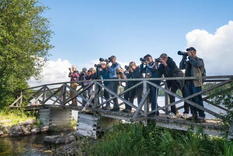 Retki Liesjärven kansallispuistoon elokuussa 2017