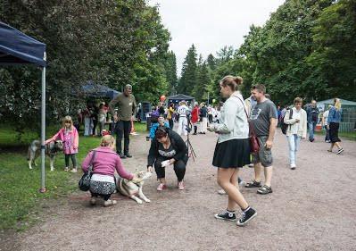Hämeenpuiston puistofiesta 2016