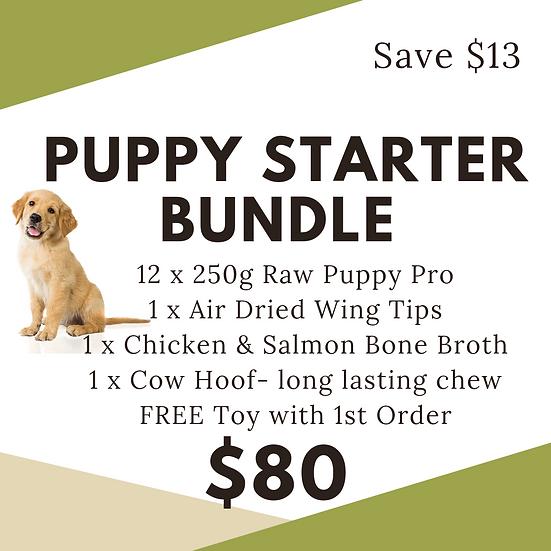 Starter Bundle - Puppy Pro