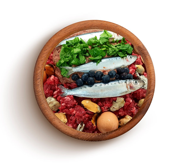 BEEF - Sardines, Blue Mussels: Longhorn Tide (ALL LIFE)