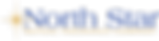 North-Star-logo-color.png