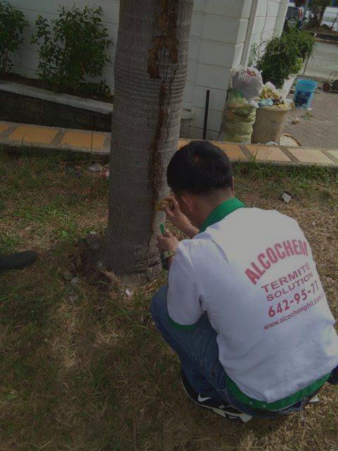 Alcochem Pest Control Corporation