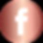 social-icon-EloValentin-fb.png