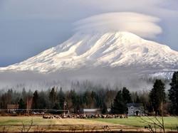 Mt Adams with Cloud Hat
