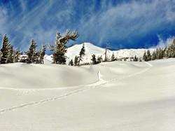 Snowboarding Mt. Adams