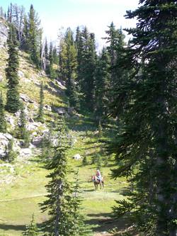 Horseback riding on Mount Adams