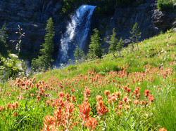 Bird Creek Falls - Mount Adams