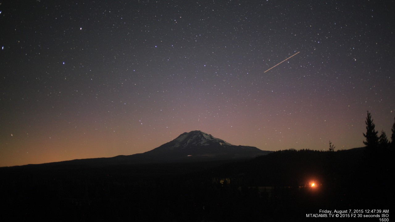 Mt. Adams Shooting Star