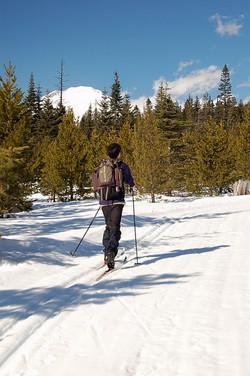 cross+country+skiiing+mt+adams