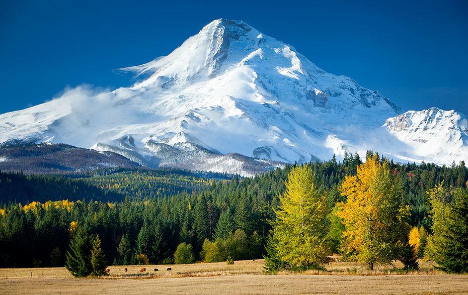 Mount+Hood