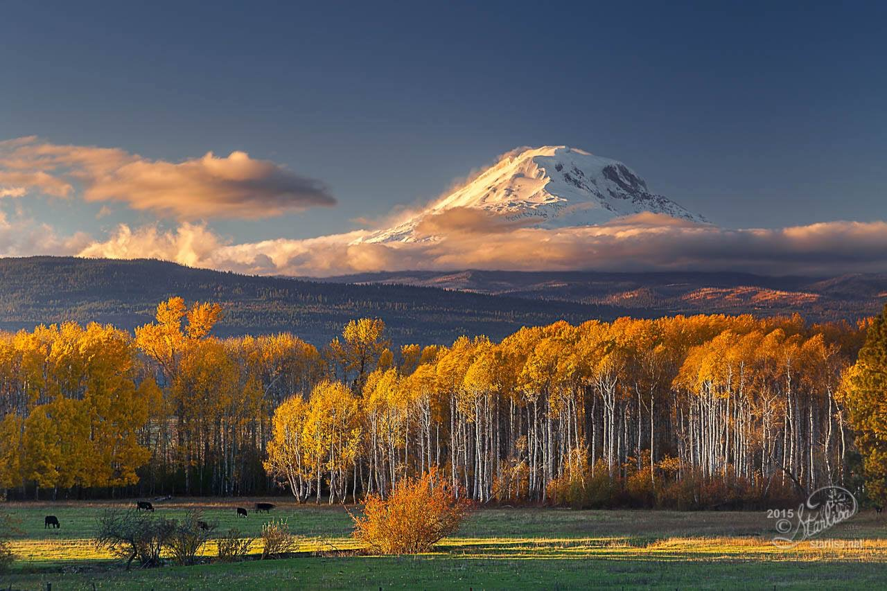 Mt. Adams - East Side