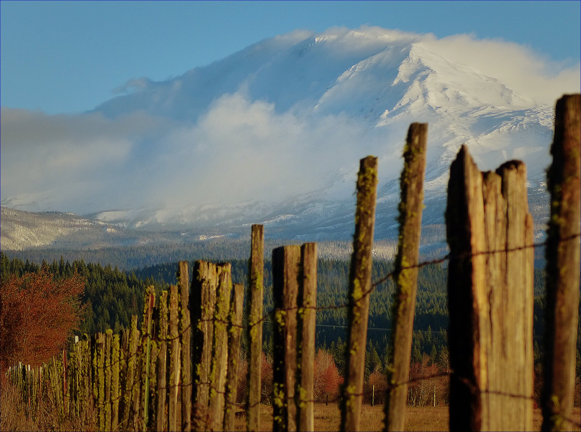Mt. Adams from Trout Lake, WA