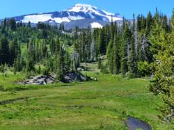 Bird Creek Meadows - Mt. Adams