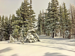 South Climb Trail in Snow