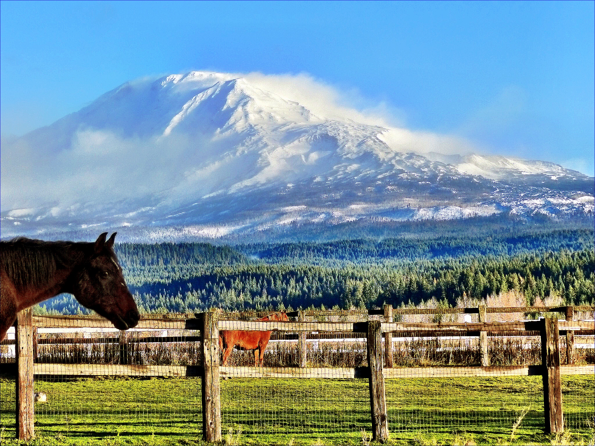 Mount Adams from a ranch in TL