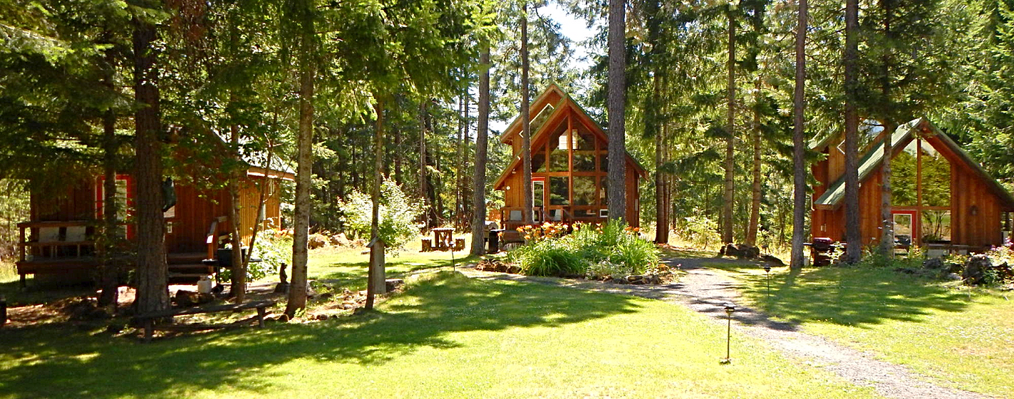 trout lake cozy cabins home