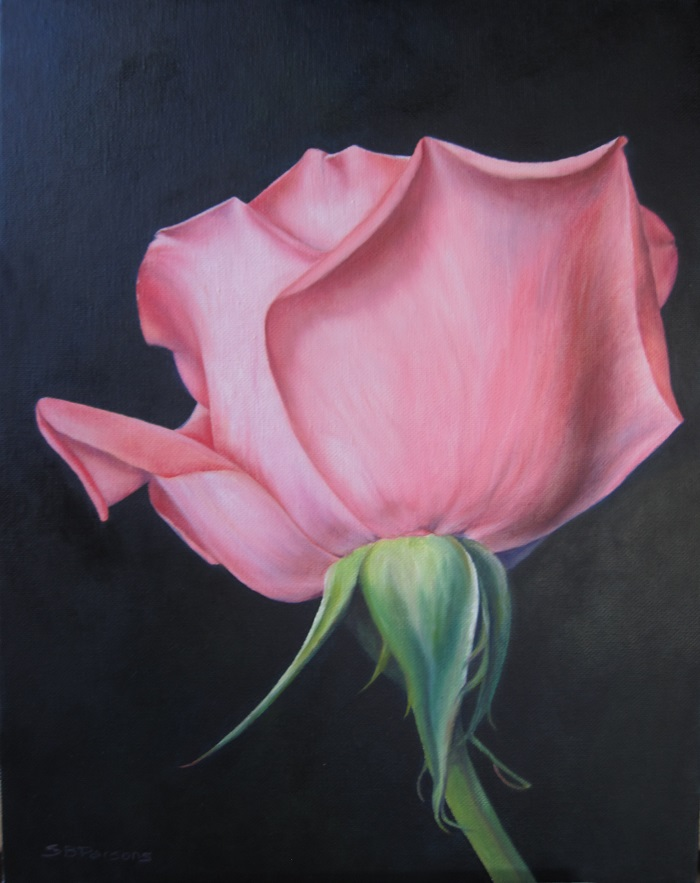 Pink Rose - oil - 11x14 - sold
