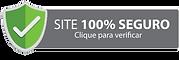 icone Site Seguro.png
