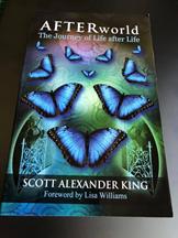 Book Afterworld by Scott Alexander King.