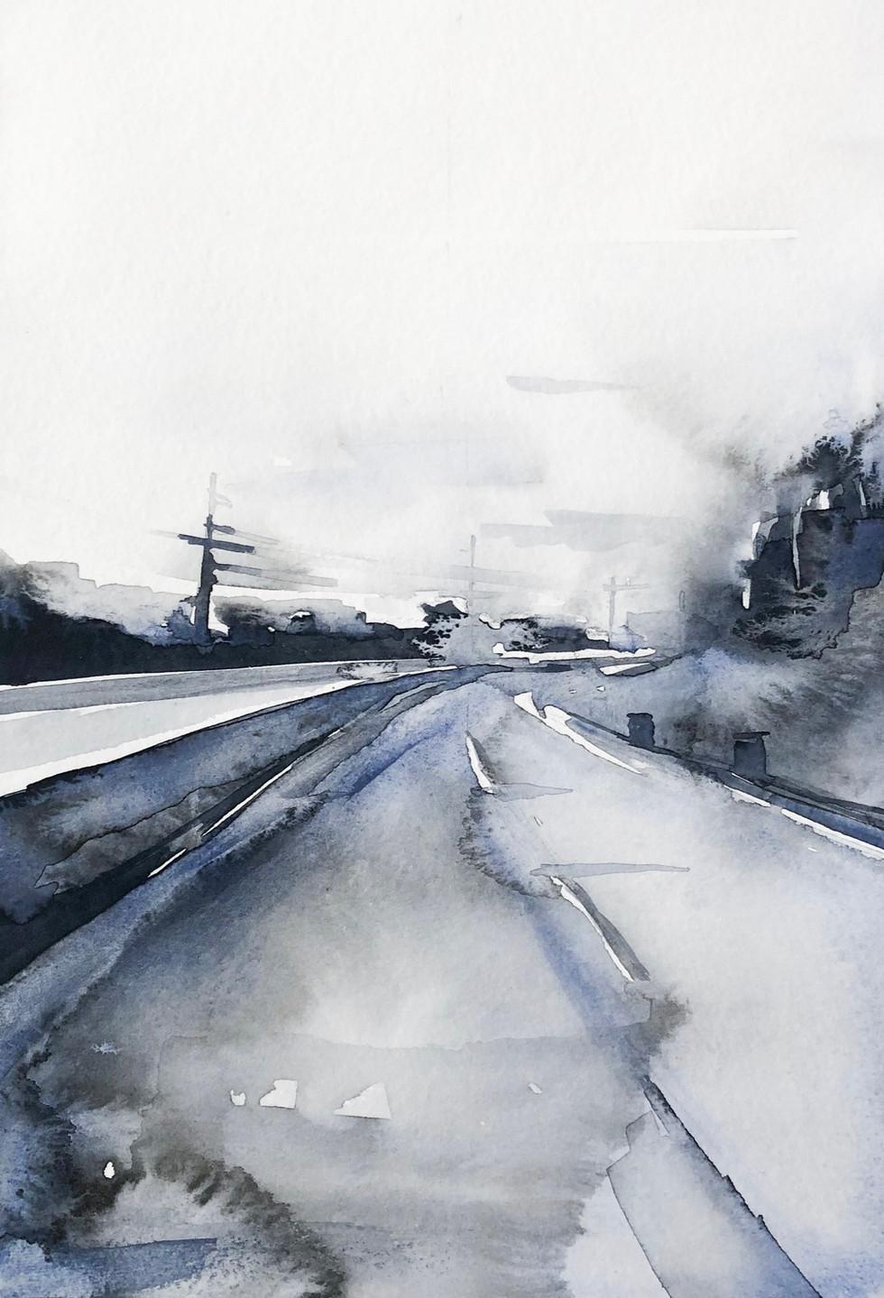 Sarah Nicole Watercolor