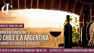 Curso de Vinhos: Intermediário - O Chile e a Argentina