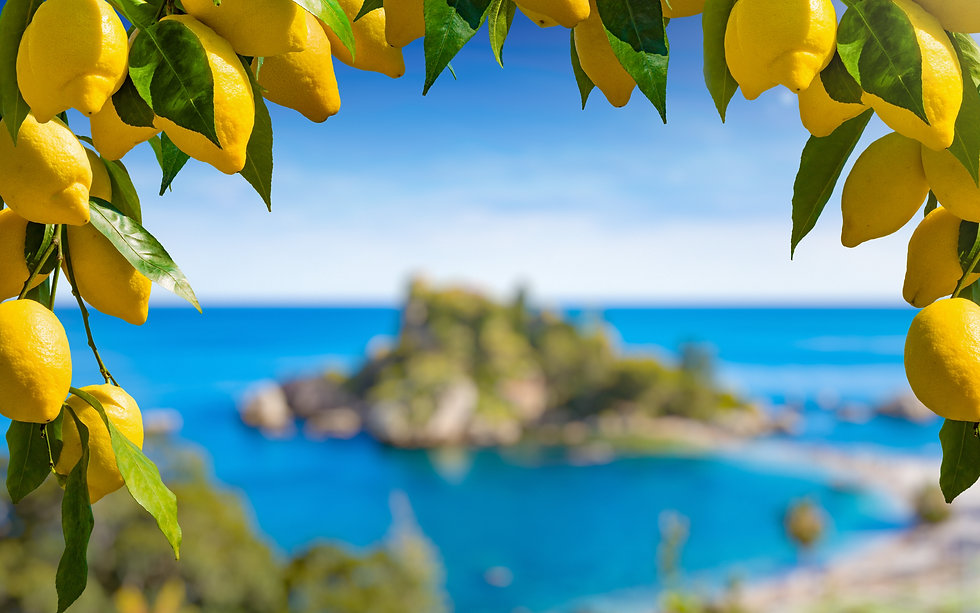 Bunches of fresh yellow ripe lemons with