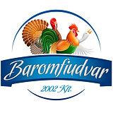 bfu logo.jpg