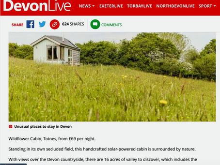 Wildflower Cabin Featured in Devon Live