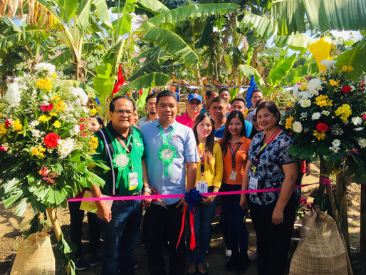 EWS Foundation PH Assists 4Ps Groups in four DSWD Sites